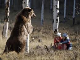 This is what many people think wildlife encounters are like.